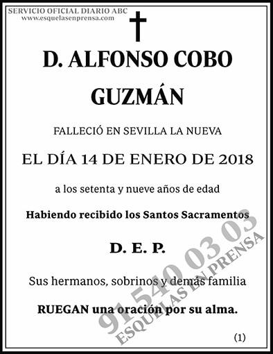 Alfonso Cobo Guzmán